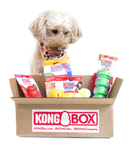 Kong-Box