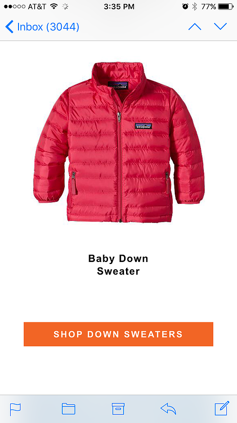 Patagonia marketing email