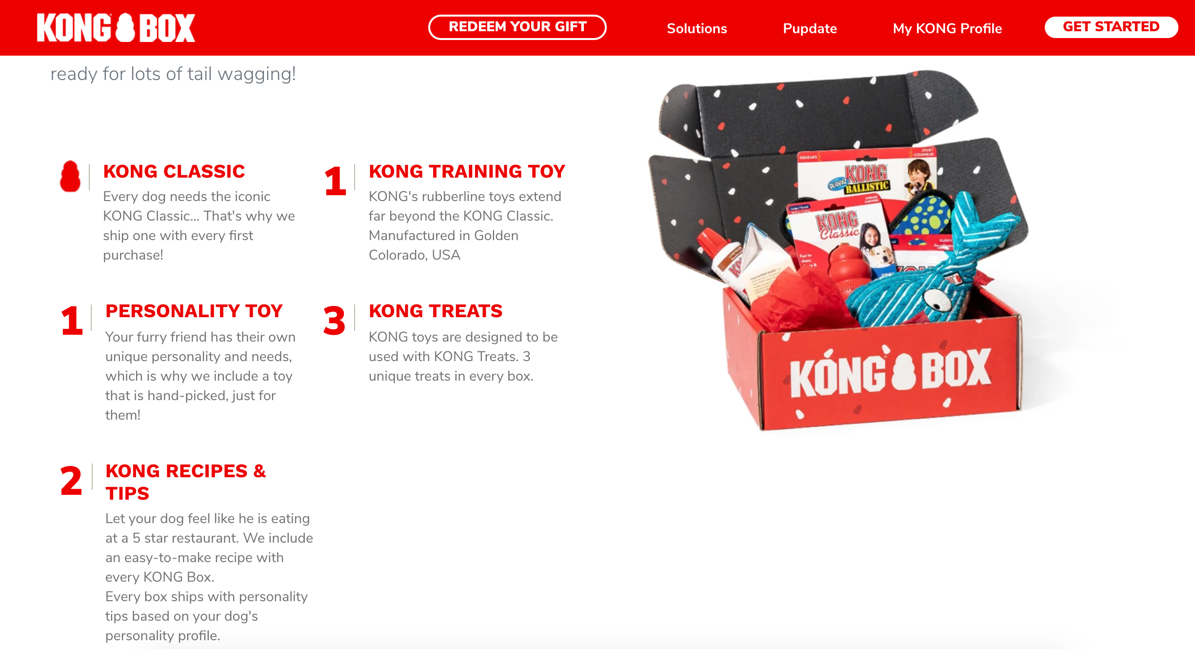 Picture of 'Kong Box' dog toy subscription box