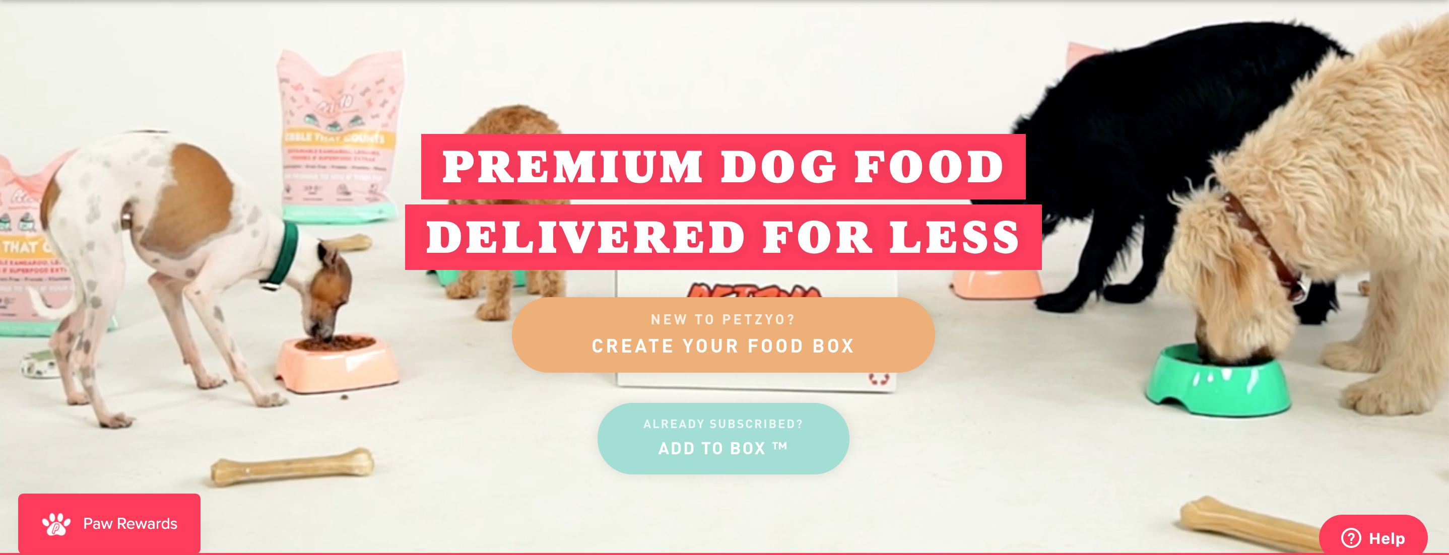 Four dogs eating from colourful bowls on Premium Dog Food banner