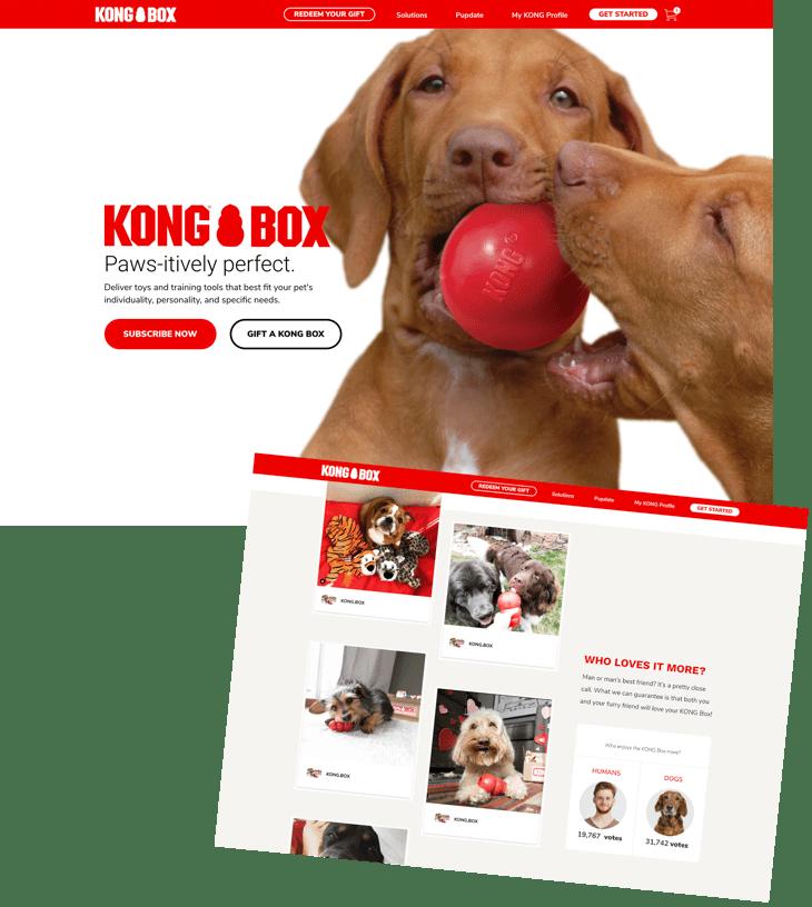 kongbox-product-page