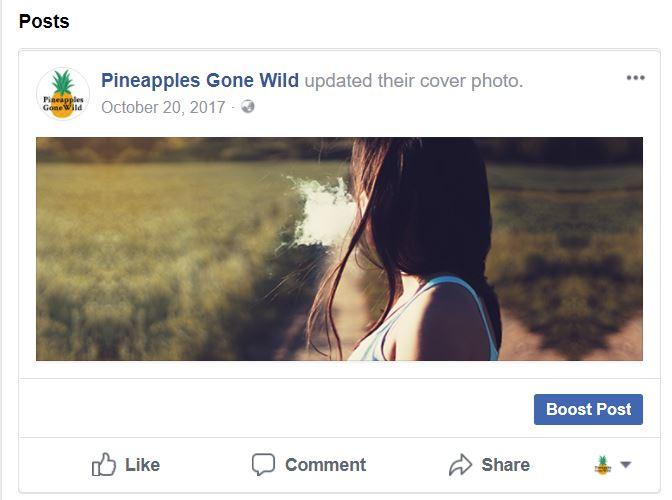 17-boosting-posts-facebook