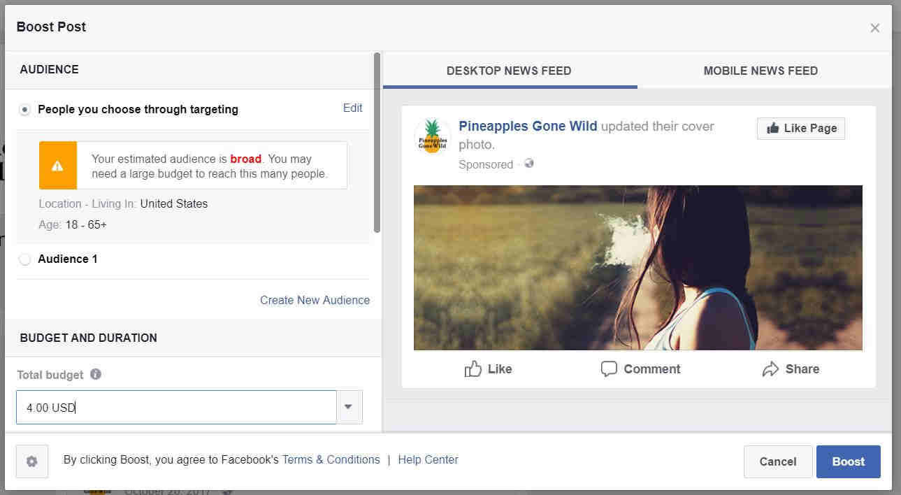 18-boost-post-targeting-facebook