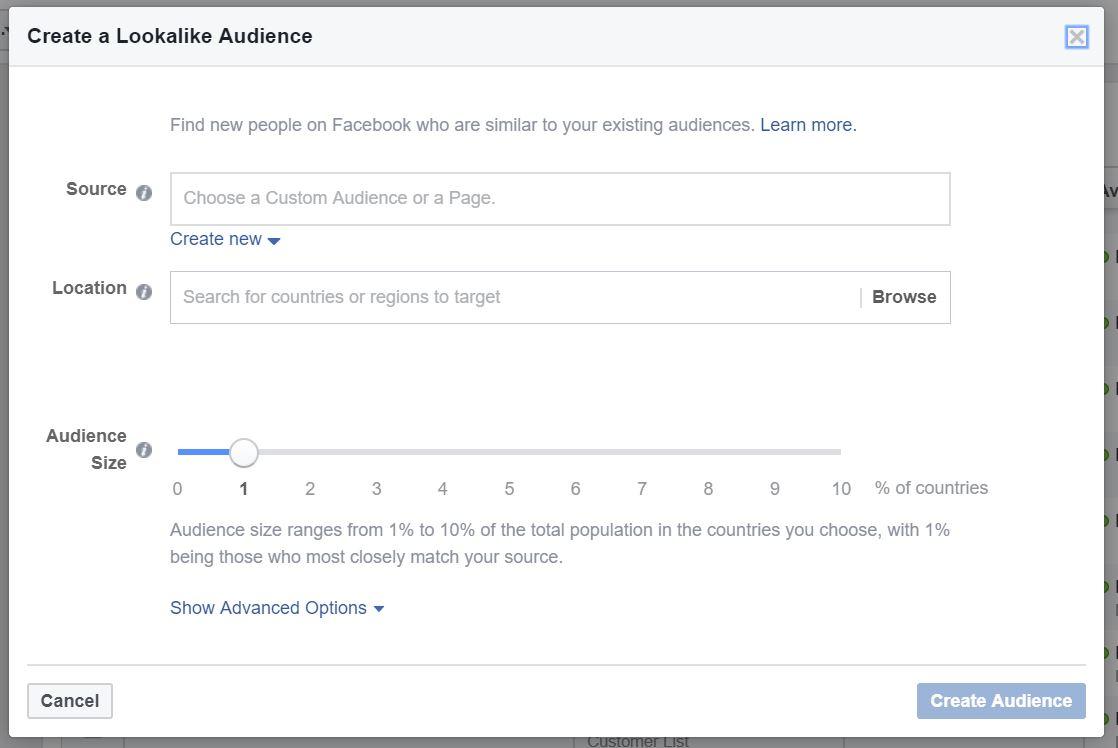 28 - facebook lookalike audience