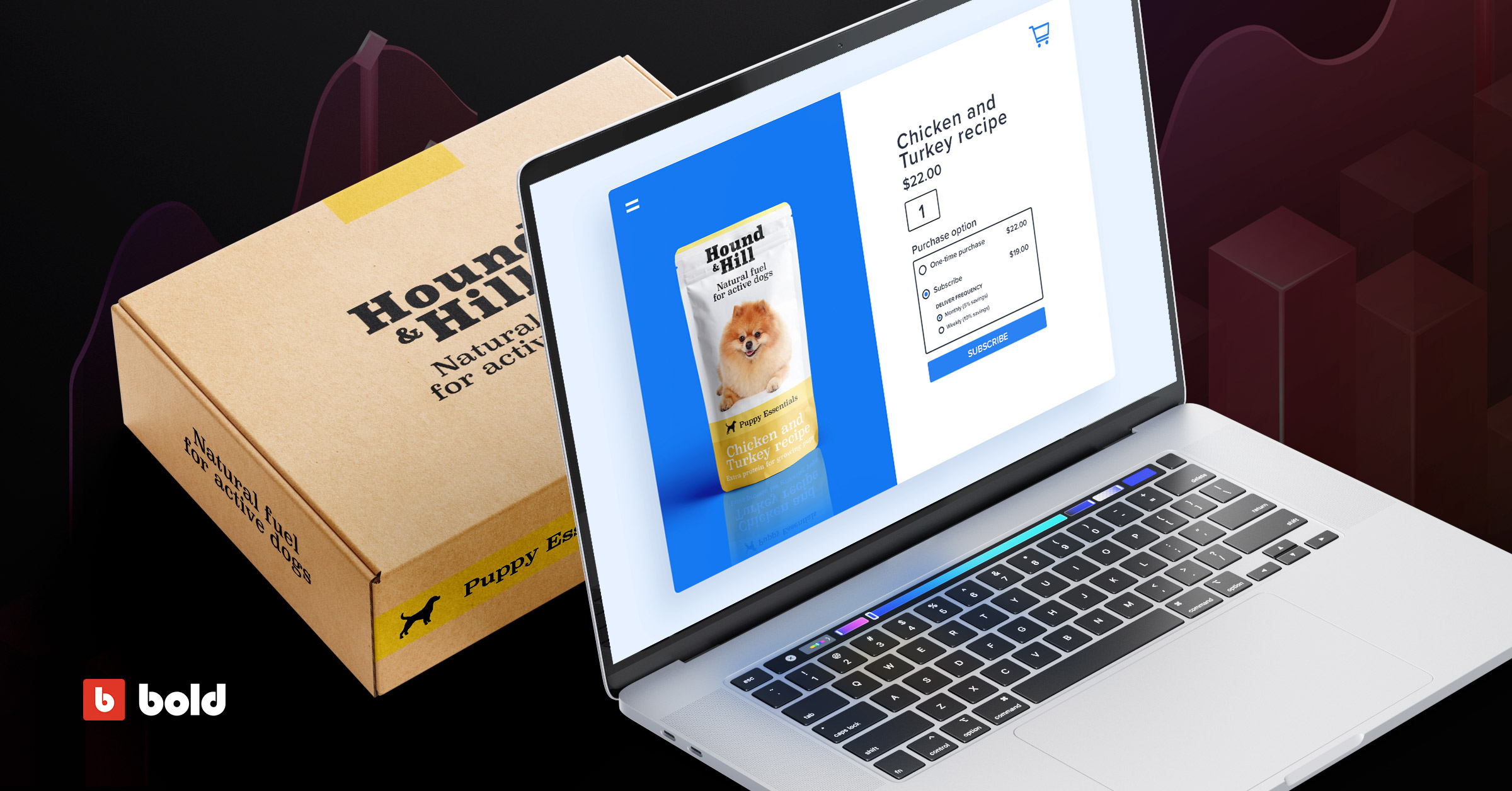 Blog banner with laptop showing subscription pet food box