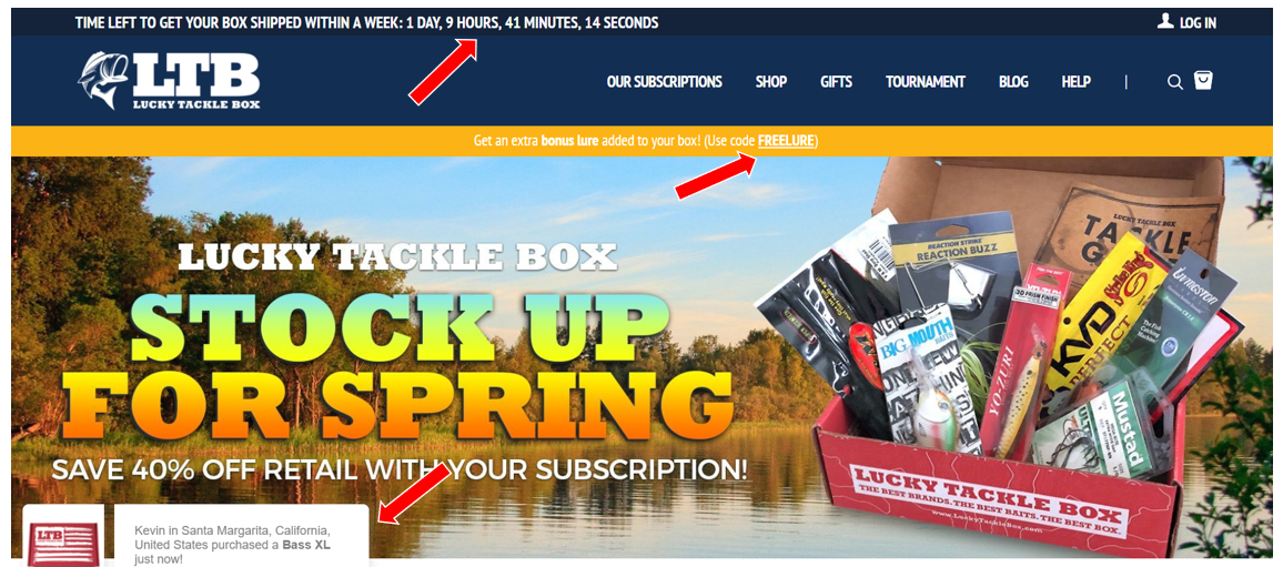 ecommerce website persuasive elements